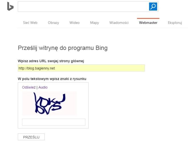 bing01